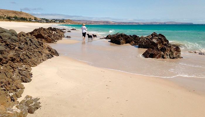 plage de sable et rochers